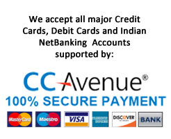 Secured Payment Option